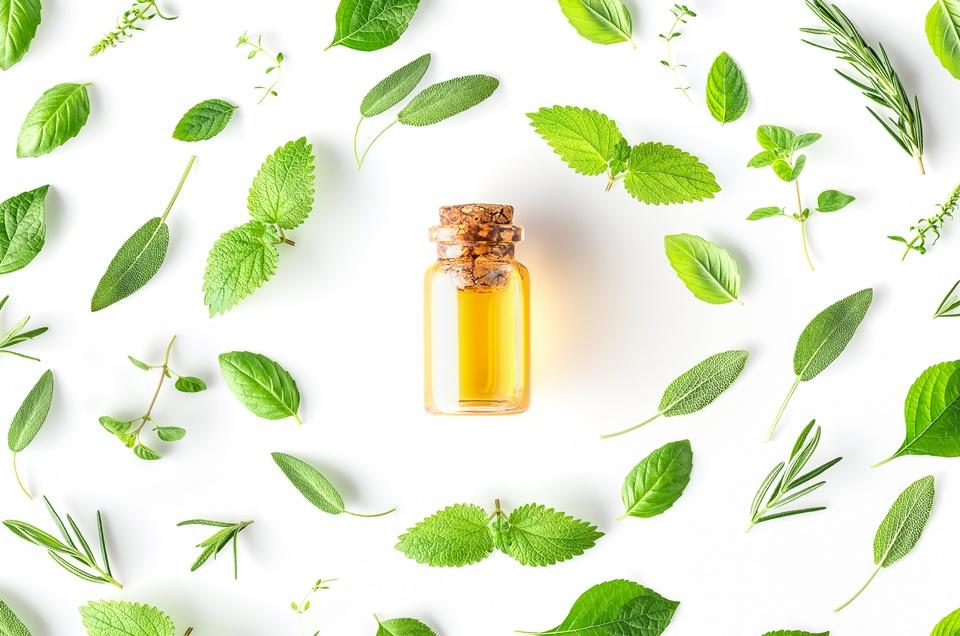 Foto de Farmácia homeopática: o que é, quais os benefícios e dúvidas